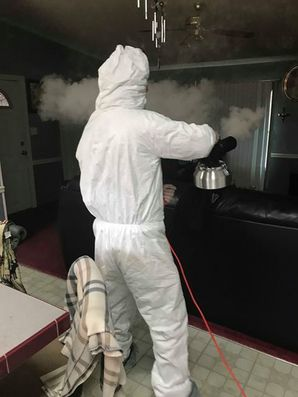 Mold Removal in Manchester, Kentucky (2)